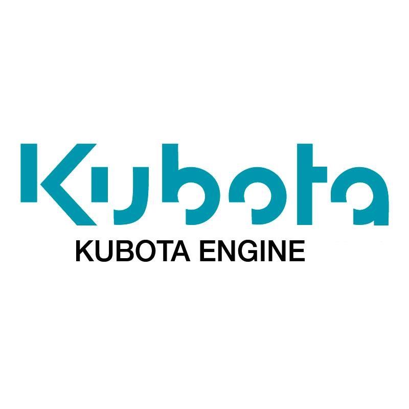GEBRAUCHTER MOTOR KUBOTA D1302